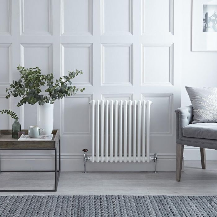 "Regent - White Horizontal 2-Column Traditional Cast-Iron Style Radiator - 23.5"" x 24"""