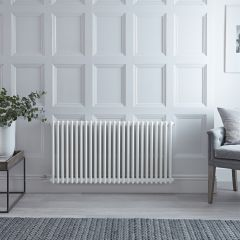 "Regent Electric -  White Horizontal 2-Column Traditional Cast-Iron Style Radiator - 23.625"" x 47"""
