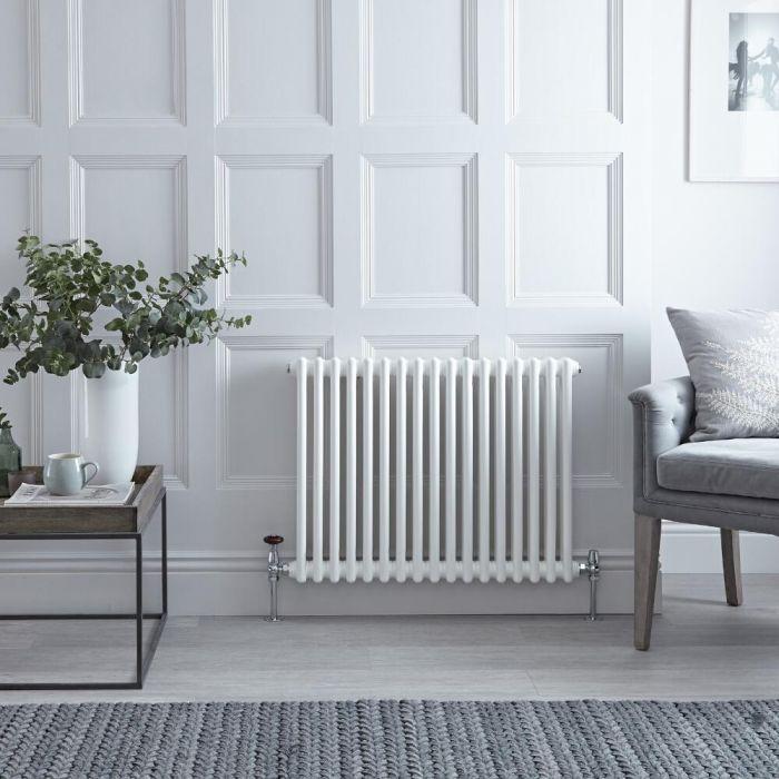 "Regent - White Horizontal 2-Column Traditional Cast-Iron Style Radiator - 23.5"" x 31"""